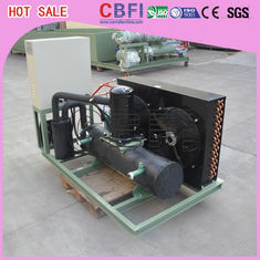 40 L / H ~ 5000 L / H Low Temperature Chiller With LG Electric Component